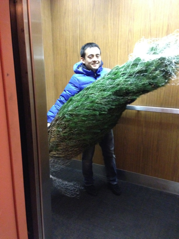 tree in the elevator