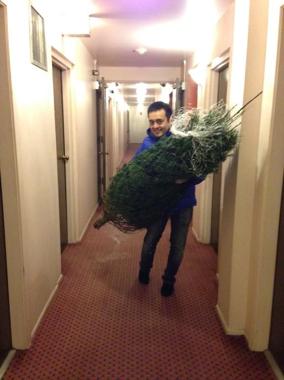 naoto and the tree