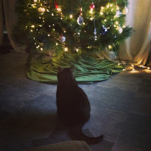 presley and the tree