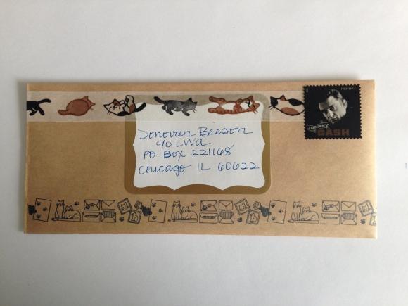 cat mail 2