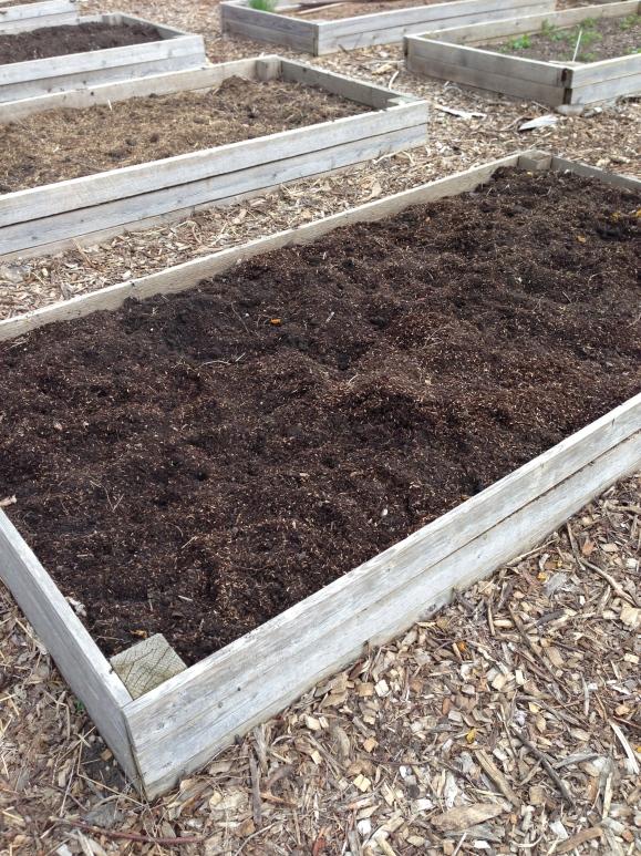 Forest Park Community Garden,  plot 6