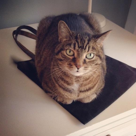 Presley and her Peg & Awl bag nap mat
