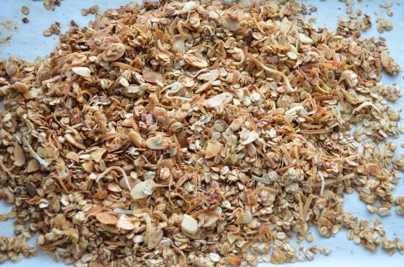 homemade granola, trader joes