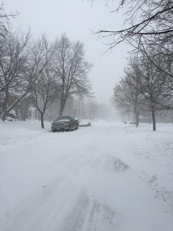 Chicago Blizzard 2015