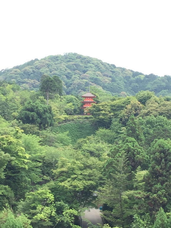 views from Kiyomizu Temple
