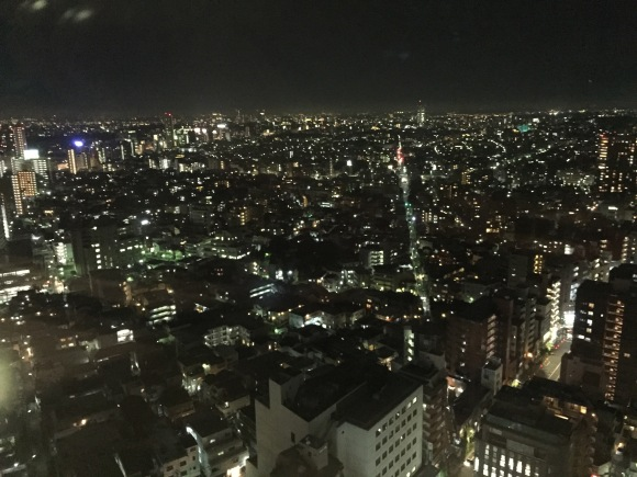 view from Carrot Tower