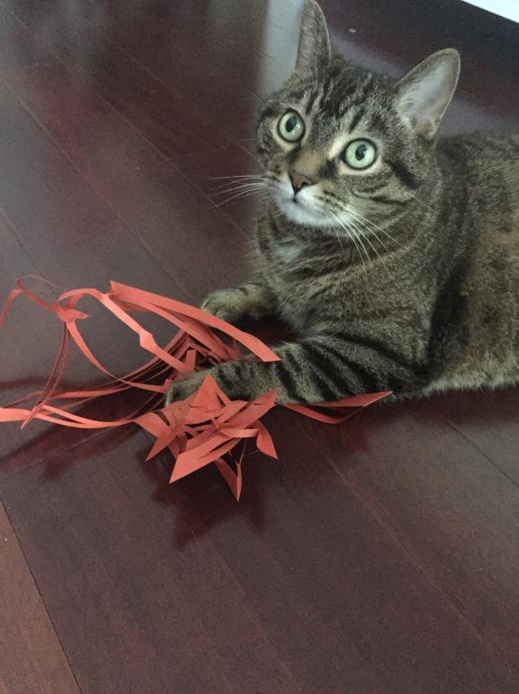 Hasegawa Tanabata 2016, decorations, origami prep