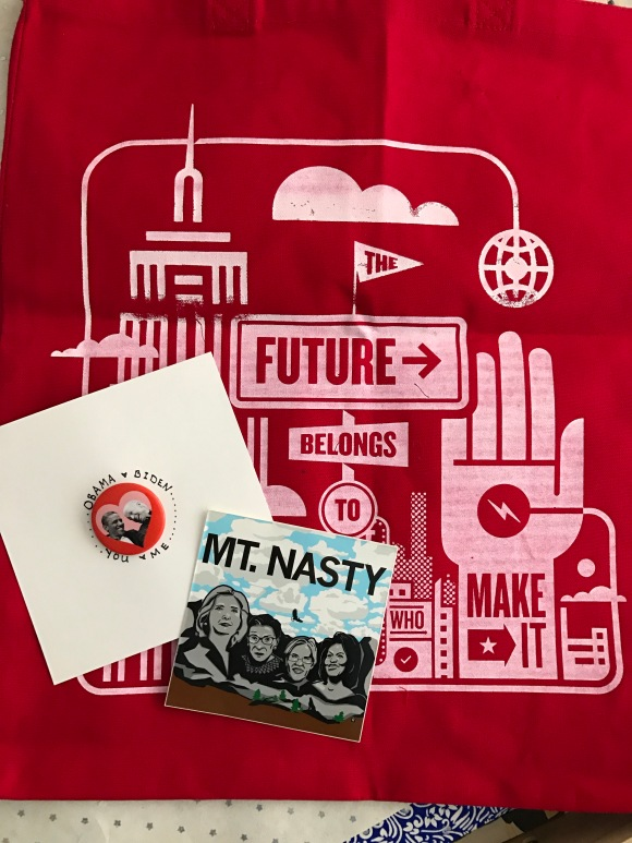 analog bag, Mt Nasty sticker, Raygun, Obama Biden love button