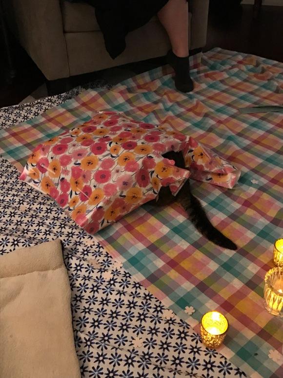 Kimberly's hanami picnic, Presley in hiding, sakura, cherry blossom