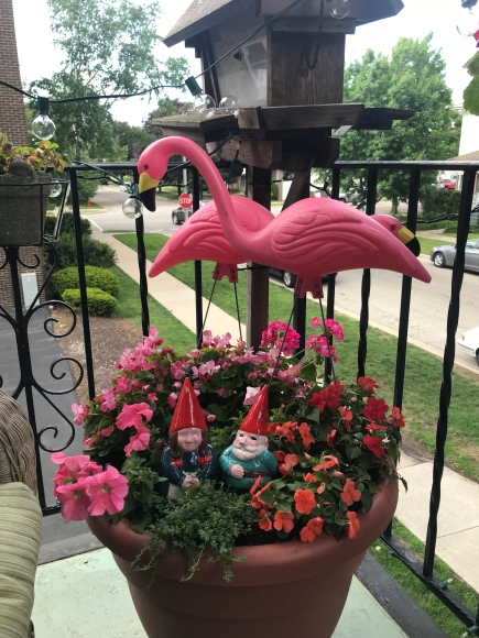 mixed pot, pink flamingoes, garden gnomes