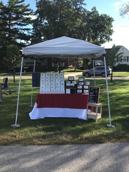 Brookfield Fine Arts Fest, Brookfield, IL, Galaxie Safari